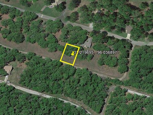 Perfect Land Near Cedar Creek Lake : Malakoff : Henderson County : Texas
