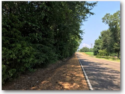 5.25 Acres In Lowndes County : Columbus : Lowndes County : Mississippi