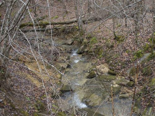 Kentucky, Leslie County : Hoskinston : Leslie County : Kentucky