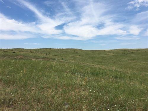 Arthur County Combo : Arthur : Nebraska