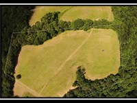 Great 11 Acre Home Site : Lancaster : Fairfield County : Ohio