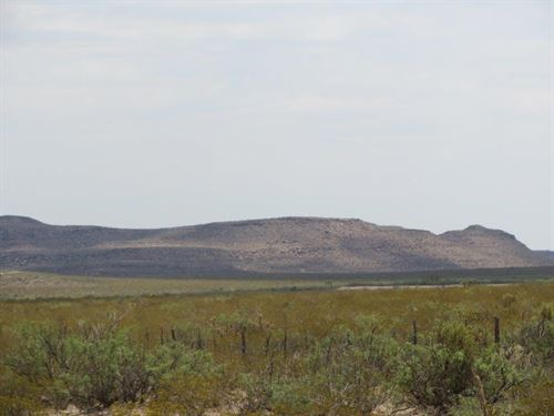 40 Acres In West Texas-$0 Down : Sierra Blanca : Hudspeth County : Texas
