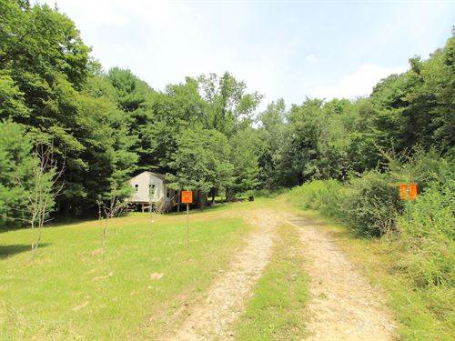 Parks Rd - 5 Acres : New Concord : Muskingum County : Ohio