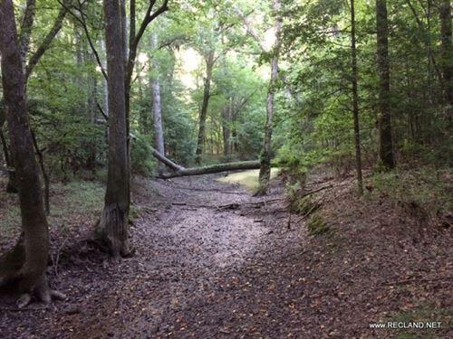 40 Ac - Hunting Tract Adjoining Kis : Montgomery : Winn Parish : Louisiana