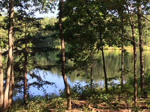 3.03+/-Acres Wooded Lake Front Prop : Dunlap : Sequatchie County : Tennessee