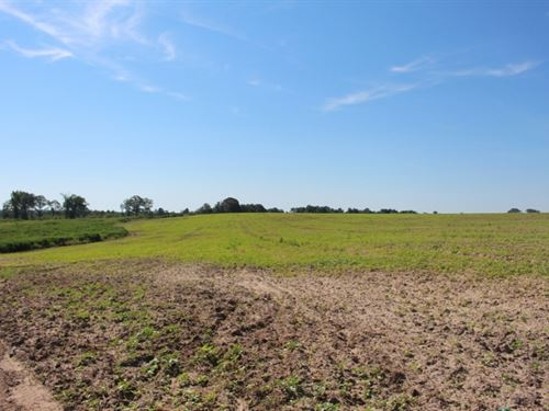 Great Hunting & Prime Farmland : Eastman : Dodge County : Georgia