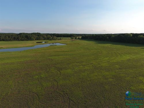 36.5 Acres Of Waterfowl Hunting : Endeavor : Marquette County : Wisconsin