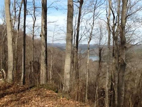 45.28 Ac Of Hunting & Wildlife : Granville : Putnam County : Tennessee