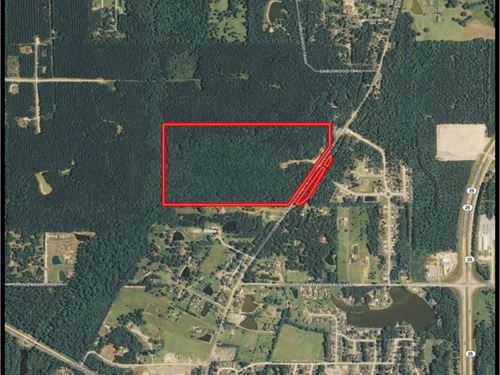 74.87 Acres In Rankin County : Flowood : Rankin County : Mississippi