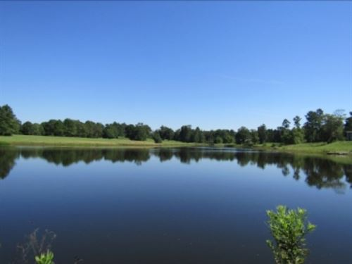 90 Acres In Perry County Golf Cours : Richton : Perry County : Mississippi