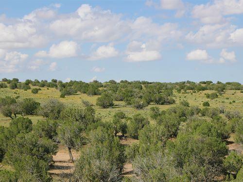 Cool Northern Az Ranch $273 Month : Saint Johns : Apache County : Arizona