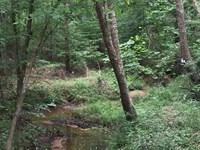 Double Creek East : Greensboro : Greene County : Georgia