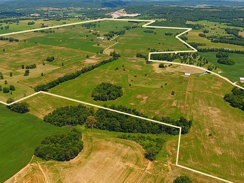 Large Kentucky Land Auction : Horse Cave : Hart County : Kentucky
