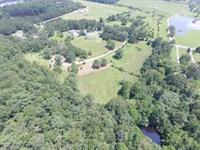 Mini Farm - Home, Ponds & Pasture : Ashville : Saint Clair County : Alabama