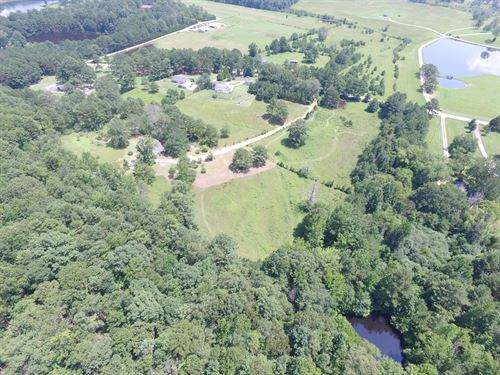 Mini Farm - Home, Ponds & Pasture : Ashville : Saint Clair County : Alabama