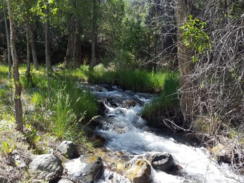 35 Acres With Year Round Creek : Howard : Fremont County : Colorado