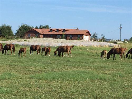 Horse Ranch : Keota : Haskell County : Oklahoma