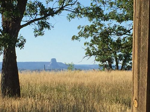 Devil's Tower View : Carlile : Crook County : Wyoming