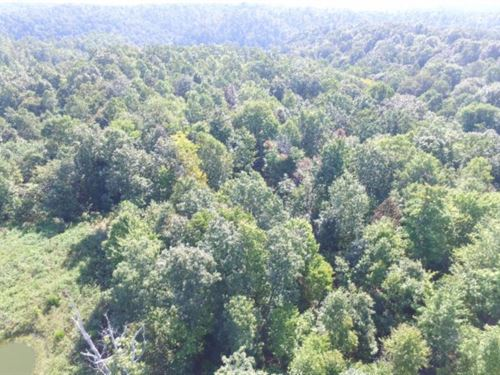 22.73 Ac S. Fork Rd. Whitleyville : Whitleyville : Jackson County : Tennessee