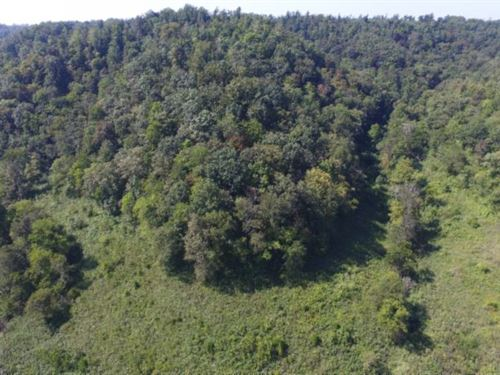 15.77 Ac S Fork Road, Whitleyville : Whitleyville : Jackson County : Tennessee