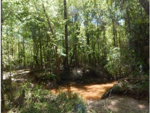 80 Acres In Newton County : Little Rock : Neshoba County : Mississippi