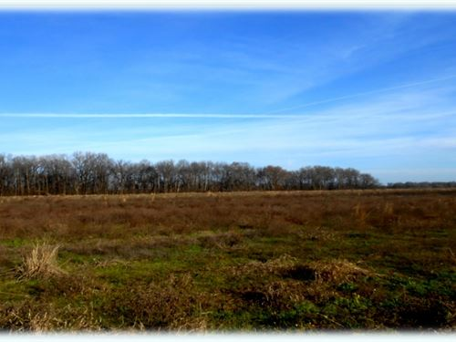 83 Acres In Leflore County : Greenwood : Leflore County : Mississippi