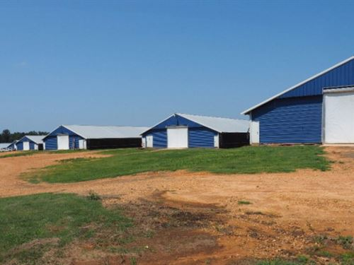 10 House Broiler Farm, Mount Olive : Mount Olive : Covington County : Mississippi