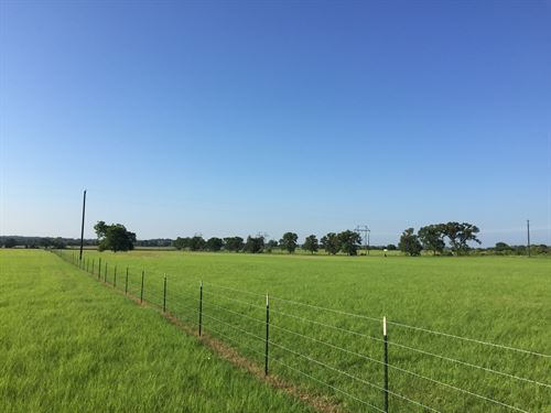 45 Acres With Great Building Sites : Stephenville : Erath County : Texas