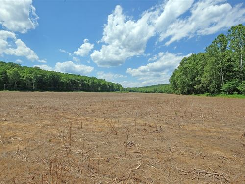 136 Acre Lifestyle Farm : Waverly : Pike County : Ohio