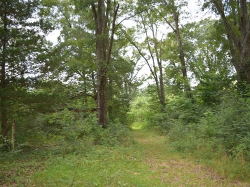 2 Acres Without Restrictions : McComb : Pike County : Mississippi