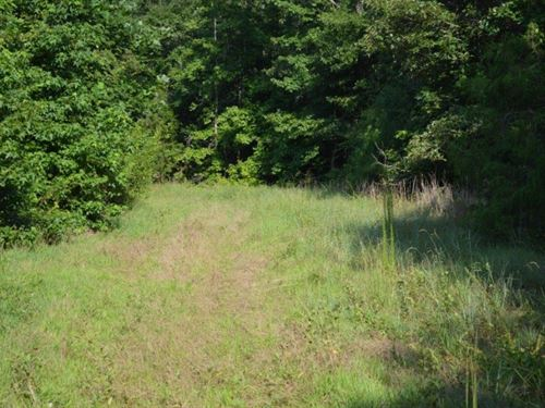 +/- 38.90 Acres Knighton Chapel Rd : Fountain Inn : Laurens County : South Carolina