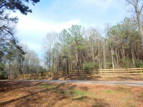20 Acres With Utilities And Great H : Tylertown : Walthall County : Mississippi