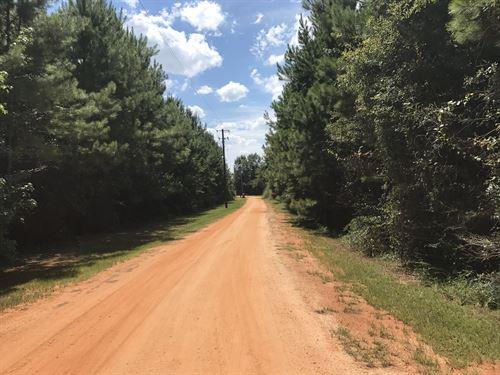 30-004S Meagher-Jernigan Trust : Flomaton : Escambia County : Alabama