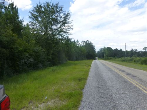 30-004N Meagher-Jernigan Trust Parcel 1 North : Flomaton : Escambia County : Alabama