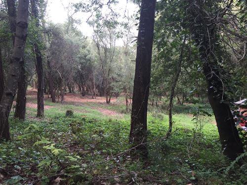 Building Lot In Exclusive Area : Santa Rosa : Sonoma County : California