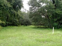 Farm With Pond And 4/2 Mobile Home : Hawthorne : Putnam County : Florida