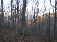 Bluff Acres, Owner Finance : Dunlap : Sequatchie County : Tennessee