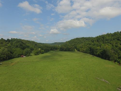 311 Ac W/ Creek, Spring & Waterfall : Collinwood : Wayne County : Tennessee