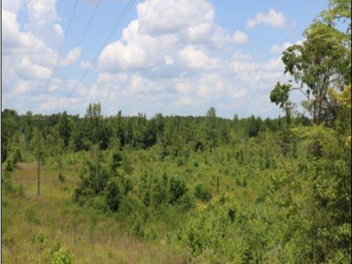 72 Acres In Neshoba County : Philadelphia : Neshoba County : Mississippi
