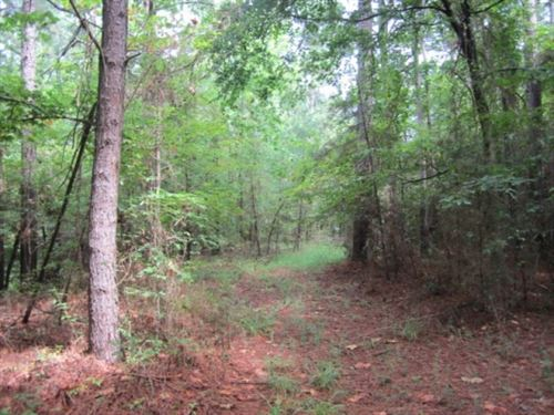 38.3 Acres In Marshall County In Ho : Holly Springs : Marshall County : Mississippi