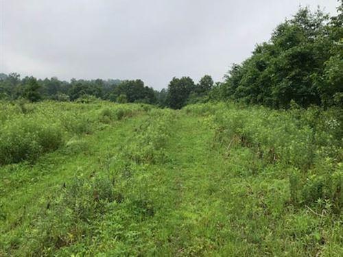 13+/- Acres Land Building Lot : Danville : Montour County : Pennsylvania