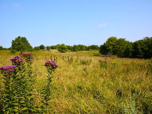 Wildlife Paradise Retreat : Lecompton : Douglas County : Kansas