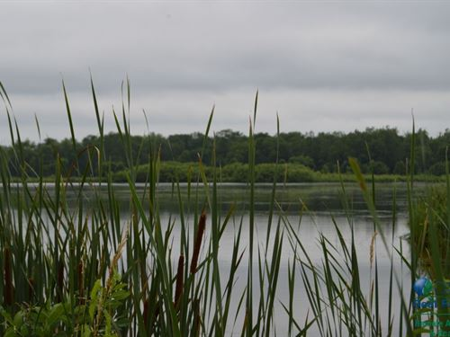 Hunting Land With Lake : Berlin : Green Lake County : Wisconsin