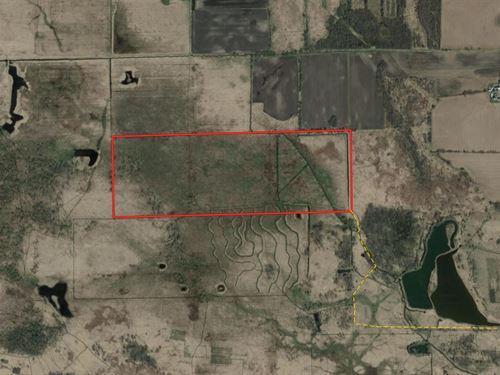 Marshland Hunting Property : Green Lake : Wisconsin
