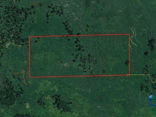 Hunting Marsh Property : Green Lake : Wisconsin