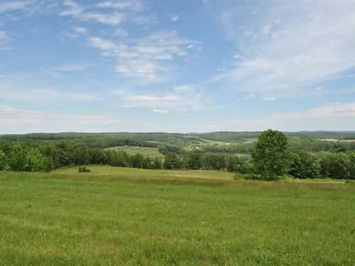 13 Acre Building Lot Driveway Views : Newark Valley : Tioga County : New York