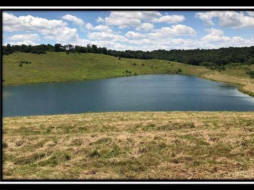 Tract 4 On Sherman Lake : Vinton : Gallia County : Ohio