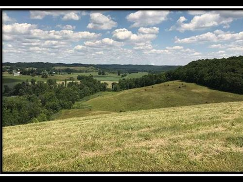 Tract 8 On Sherman Lake : Vinton : Gallia County : Ohio