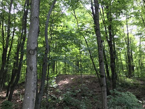 Camp Muddy Brook : Redfield : Oswego County : New York