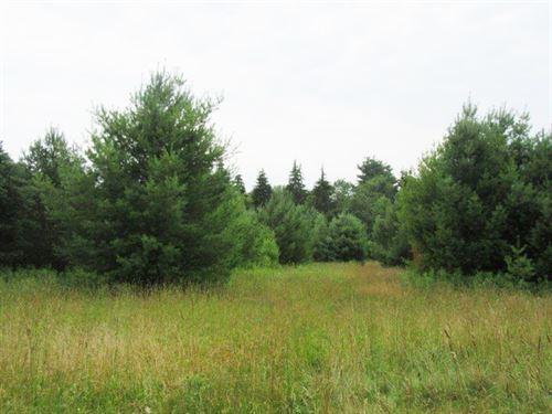 10 Acres In Williamstown Ny : Williamstown : Oswego County : New York